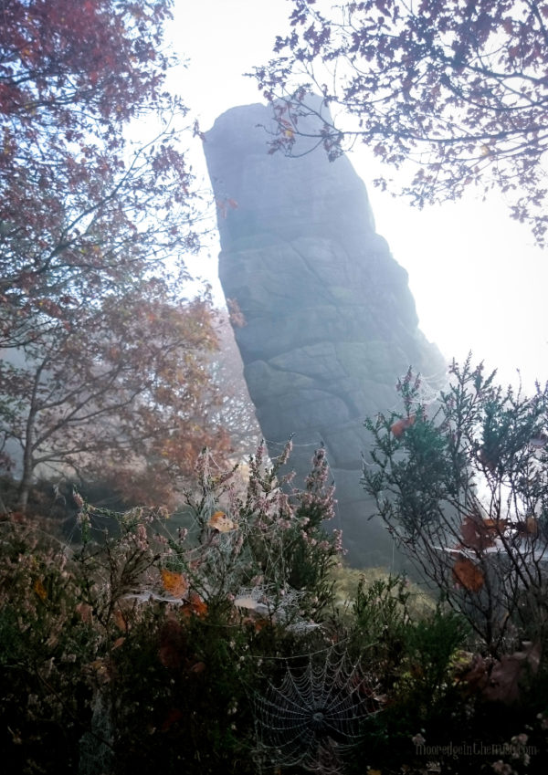 Autumn at Hell Hole, cobweb and monolith © Bryony Whistlecraft | MooredgeintheMist.com