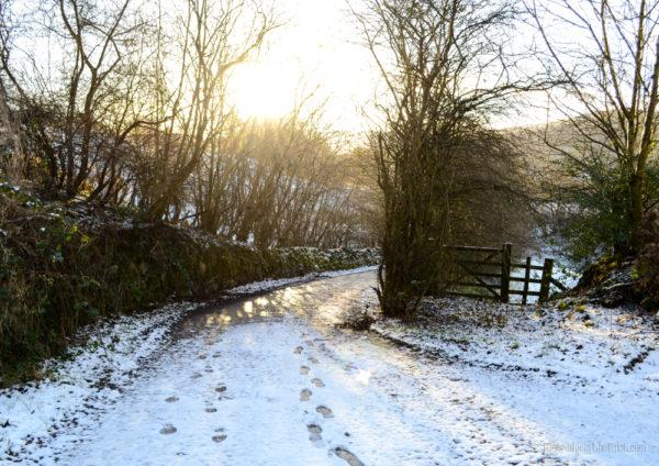 A Winter Morning, snowy country lane © Bryony Whistlecraft   MooredgeintheMist.com
