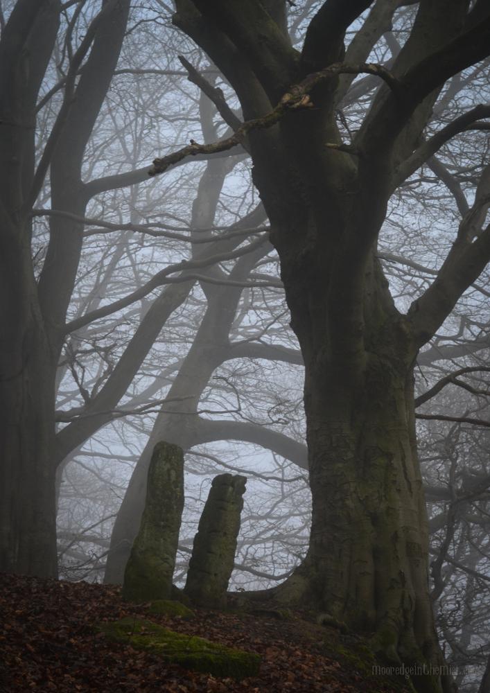 Misty Path, Autumn woodland with standing stones © Bryony Whistlecraft   MooredgeintheMist.com