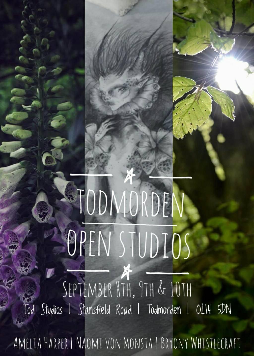People of the Hills at Todmorden Open Studios 2017   Amelia Harper - Naomi von Monsta - Bryony Whistlecraft