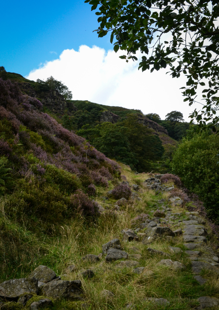 Path to Eagle Crag, Todmorden (Calderdale, Yorkshire) © Bryony Whistlecraft | MooredgeintheMist.com