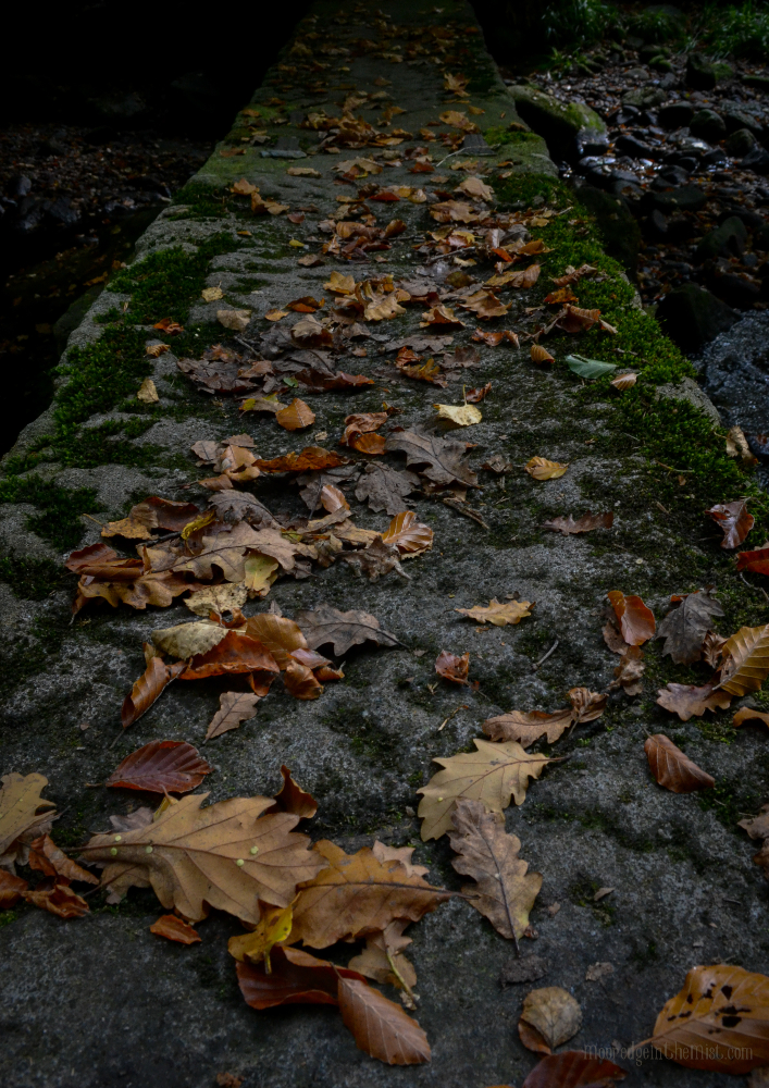 Cragg Vale, Clapper Bridge and autumn leaves © Bryony Whistlecraft | MooredgeintheMist.com