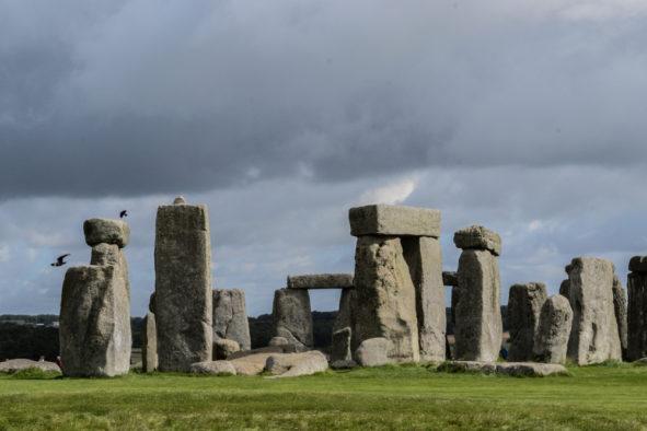 Stonehenge, corvids at the stones © Bryony Whistlecraft | MooredgeintheMist.com