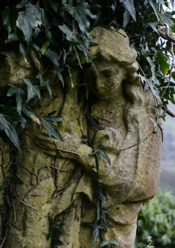 Cross Stone Cemetery, ivy entwined Angel © Bryony Whistlecraft | MooredgeintheMist.com