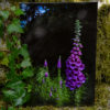 Foxglove A5 Print © Bryony Whistlecraft | MooredgeintheMist.com