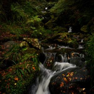 Waterfall © Bryony Whistlecraft | MooredgeintheMist.com